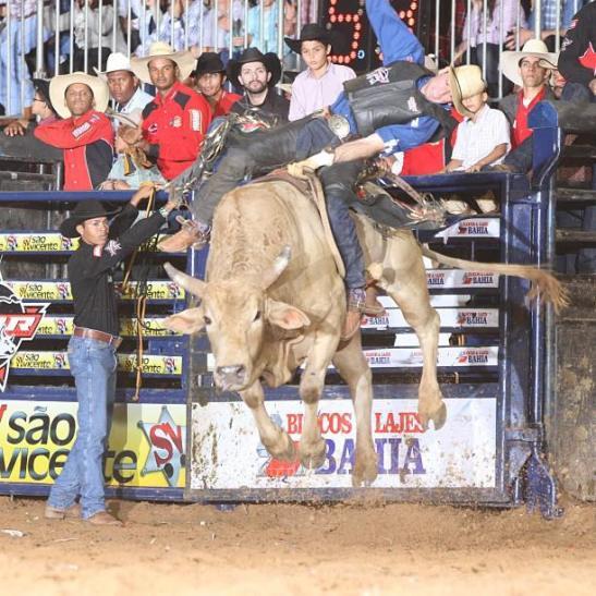 Montando o touro Baleado, Cia. Paulo Emilio, o paranaense Fabiano Vieira conquistou a vitória em Americana (Foto: André Silva)